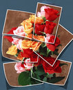 Collage flover bouquet of flowers collected from different photos Royalty Free Stock Photos