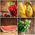 Collage of fresh vegetables berries and fruits selective focus onion corn watermelon hawthorn Royalty Free Stock Images