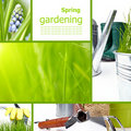 Collage garden and spring Stock Photography