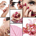 Collage for healthcare and beauty industry Royalty Free Stock Photo