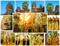The collage from images of Angkor Wat in Cambodia