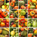 A collage of images with fruits and vegetables Royalty Free Stock Photography