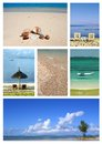 Collage images tropical resort depicting seascapes assortment off sea shells beach Royalty Free Stock Photo