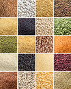 Collage of legumes and cereals different close up Royalty Free Stock Photos