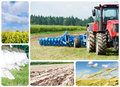 Collage Ploughing tractor at field cultivation Stock Photo