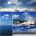 Collage of sea landscapes marine species and clouds Stock Image