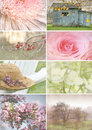 Collage of seasonal images with vintage look Stock Images