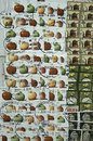 Collage of us postage stamps cancelled Royalty Free Stock Images