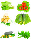 Collage of vegetables on white background. Stock Images