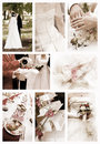 Collage of wedding photos Stock Photos