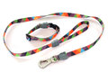 Collar and leash Royalty Free Stock Photo