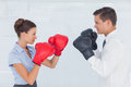 Colleagues in competition having a boxing match bright office Stock Photos