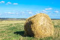 Collected in stacks of hay in the field a farm Stock Image