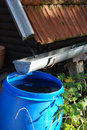 Collecting rainwater for watering the garden from roof to barrel avoiding rain tax Stock Photos