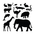 Collection animale de silhouette de zoo Photos stock