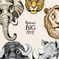 Collection of animals from Africa& x27;s big five. Vector illustration on light light brown background