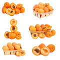 Collection of apricots in a basket Stock Images