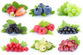Collection of berries fruits grapes strawberries red currant berry isolated on white Royalty Free Stock Photo