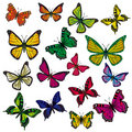 A collection of butterflies Royalty Free Stock Images