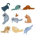 Collection of cat icons vector image Royalty Free Stock Image