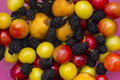 Collection of colorful fresh fruit berries and cherries Stock Photos