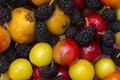 Collection of colorful fresh fruit berries and cherries Stock Images