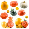 Collection of colorful pumpkins Royalty Free Stock Images