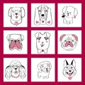 Collection with cute dogs set in sketch cartoon style Royalty Free Stock Photo