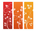 Collection of floral backgrounds Royalty Free Stock Photos
