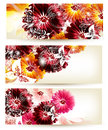 Collection of flower vector backgrounds Stock Photo