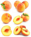 Collection of fresh peach fruits isolated Royalty Free Stock Photo