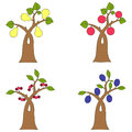 Collection of fruit trees Royalty Free Stock Photo