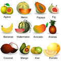 Collection of fruits plastic design part Royalty Free Stock Images