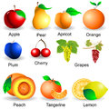 Collection of fruits plastic design part Royalty Free Stock Photo