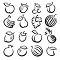 Collection of fruits set vector illustration Stock Photos
