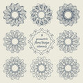 Collection of geometric floral design elements Royalty Free Stock Photo