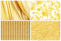 Collection golden background , silk, golden rose, gold and gold Royalty Free Stock Photo