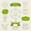 Collection of green labels and badges for organic, natural, bio Royalty Free Stock Photo