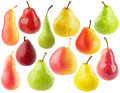 Collection of isolated pears Royalty Free Stock Photo