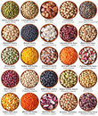 Collection of legumes isolated on white with labels