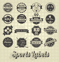 Collection of mixed sports icons and labels Royalty Free Stock Photography