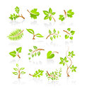 Collection of nature icons with reflection on white Royalty Free Stock Photo