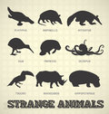 Collection of odd and strange animal silhouettes Stock Photo
