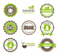 Collection organic eco badges web print Royalty Free Stock Photos