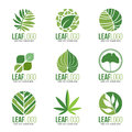 Collection Of Organic Green Leaf Logo Symbols Vector Design