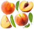 Collection of peaches isolated on the white background Royalty Free Stock Photo