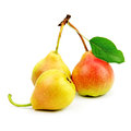 Collection pears Royalty Free Stock Photo