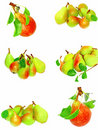 Collection of pears and green leaf. Isolated Royalty Free Stock Photos