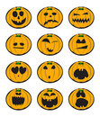 Collection of pumpkin Royalty Free Stock Photo