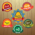 Collection of Retro Fruits Label Design